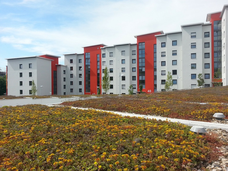 property-rehabilitation-349493_1920